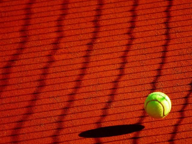 Sport : Top 4 des aliments les plus efficaces